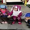 Тематическая неделя « В мире животных»  Детский сад №44