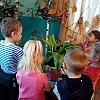 Работа по уходу за растениями. Детский сад № 22