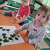 Использование природного материала в работе с детьми дошкольного возраста. Детский сад №1