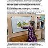 Малая родина. Детский сад №53