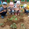 Огород у нас не плох или песочная терапия. Детский сад №1