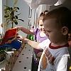 «Огород на подоконнике» Детский сад №51