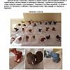 «Животные жарких стран» Детский сад №14