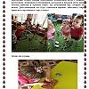 Проект «Насекомые». Детский сад №14