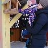 «Покормите птиц зимой» Детский сад №1