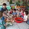 «Чудо – огород» - на окне живет ! Посев семян. Детский сад №1