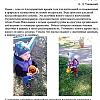 Осенняя прогулка в средней группе. Детский сад №53