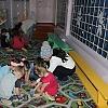 Игра – путешествие для старших дошкольников «По стране Светофории». Детский сад №1